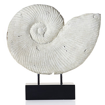 faux-fossilized-shell-160821279